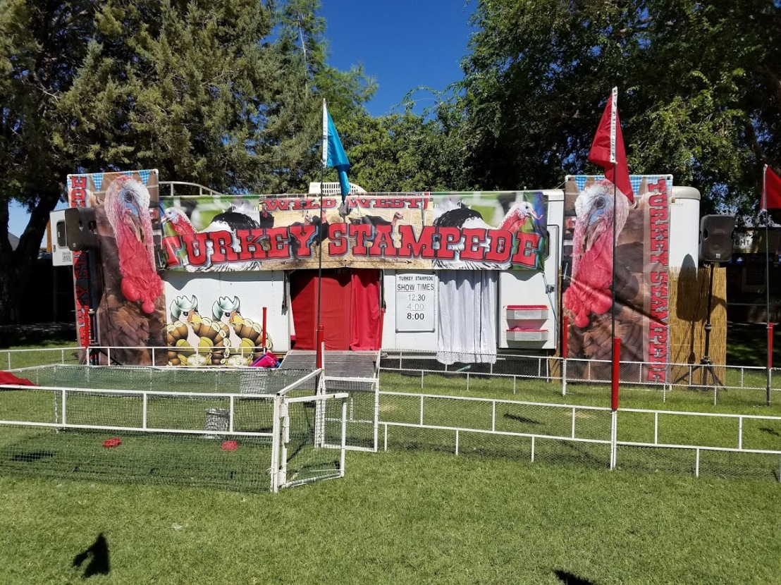 TriCountyFair2016TurkeyStampede